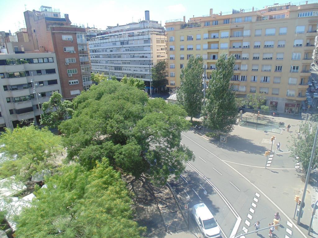 Piso Alquiler Barcelona Flat UP! - MOLINA V Sant Gervasi (7)